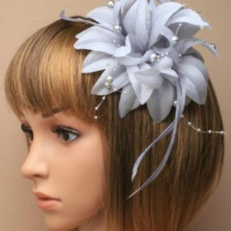Arranview 5865 silver grey fascinator